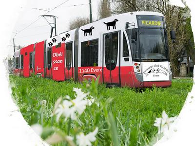 Cliquez sur le tram pour chercher votre itinéraire en transport en commun